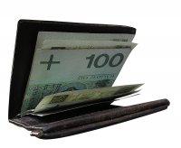 portfel z pieniędzmi